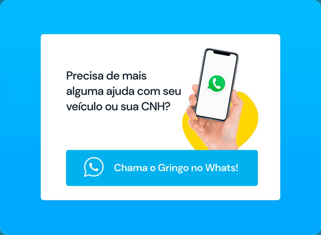 Whatsapp Gringo - APP GRINGO
